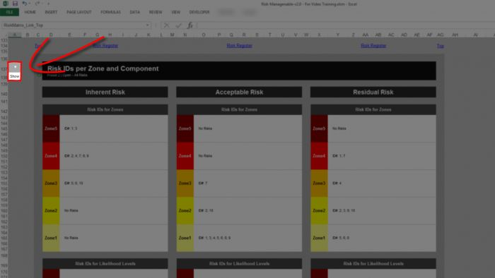 Risk Template in Excel - Risk Heat Maps or Risk Matrix: for Multiple Risks, IDs Show or Hide Choice