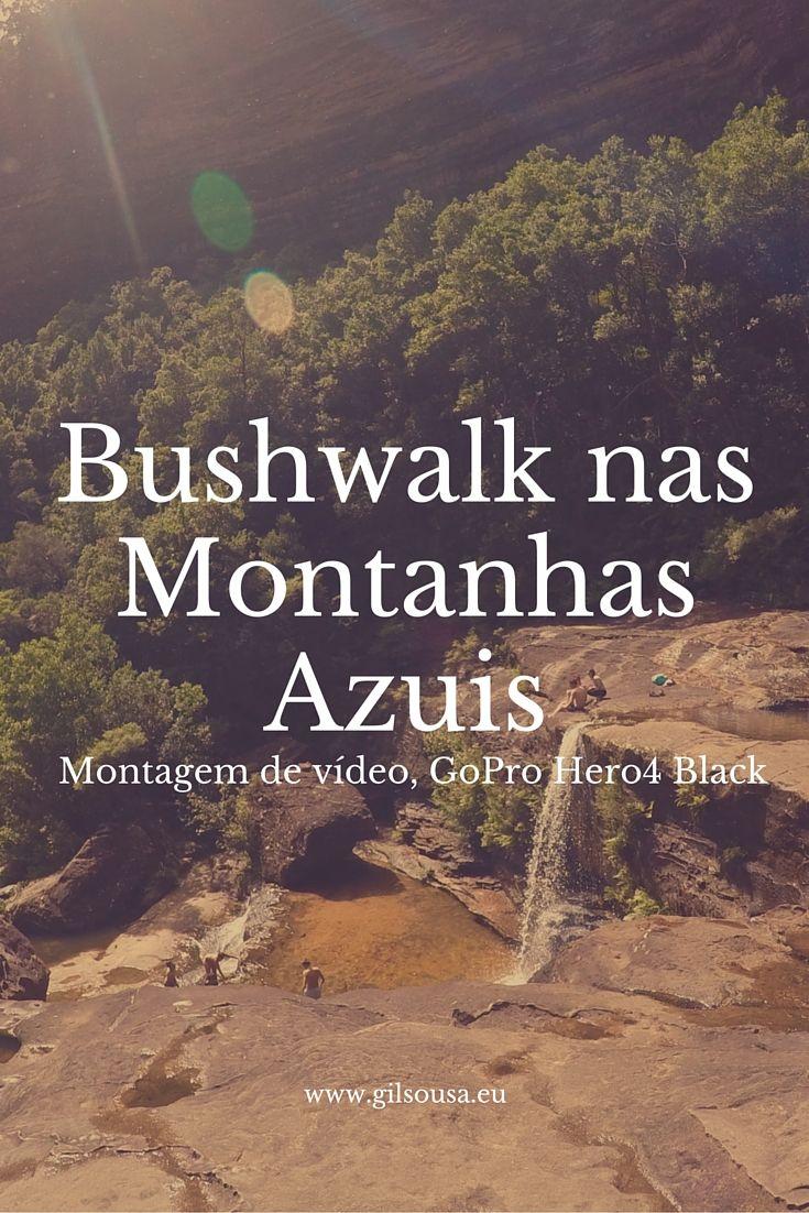 """""""#Bushwalk"""" nas Montanhas Azuis #BlueMountains #Sydney #Australia"""