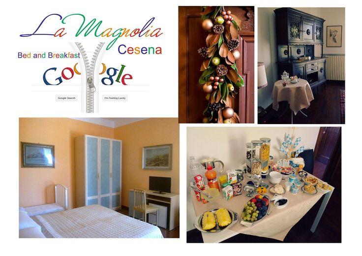 Romagna da cercare su Google. La Magnolia Cesena B&B a 39,00 euro a notte