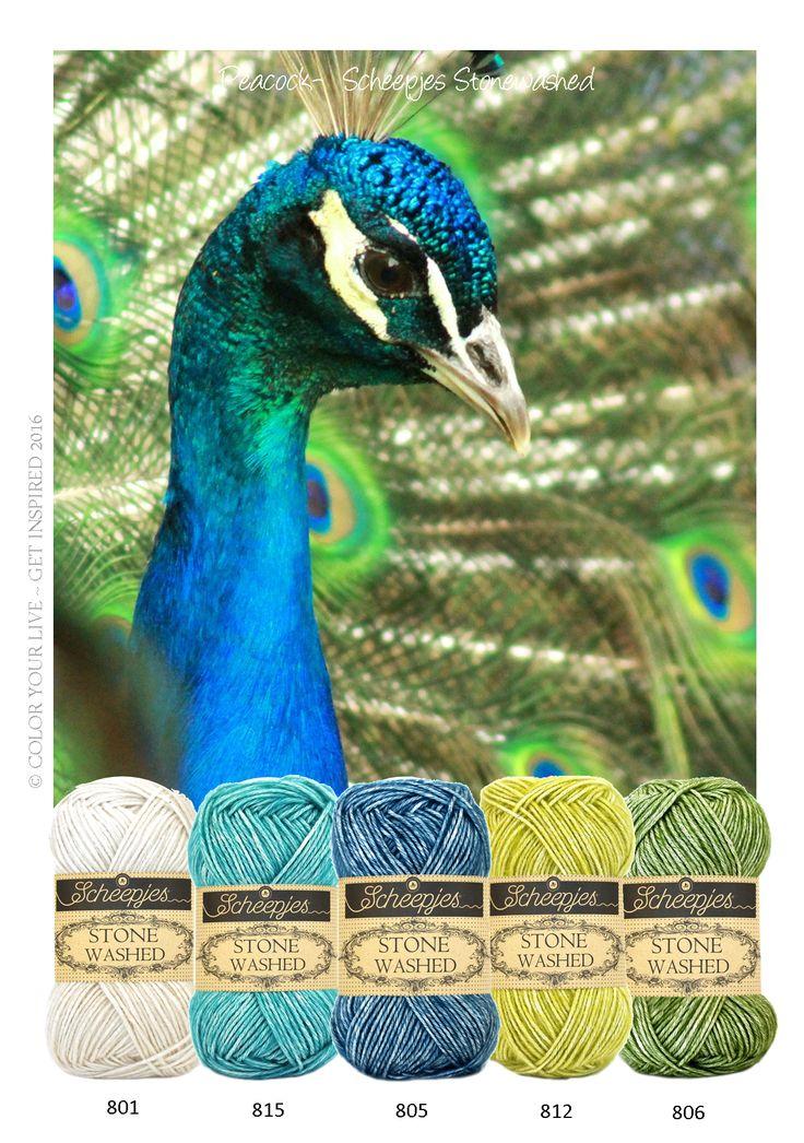 Peacock - Scheepjeswol Stone Washed is een garen, met een robuuste look. Met Scheepjeswol Stone Washed haak je gave amigurumi's, een stijlvol deken voor over de bank of een stoere omslagdoek.