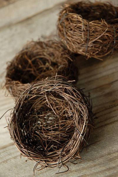 Are you aware that you can order handmade birds nests? How cute would these things be in the home for spring decor?!