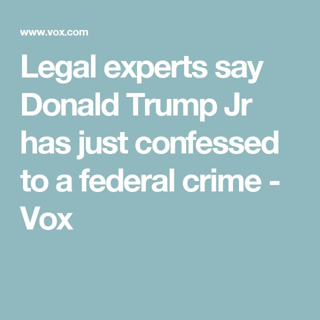 Legal experts say Donald Trump Jr has just confessed to a federal crime - Vox