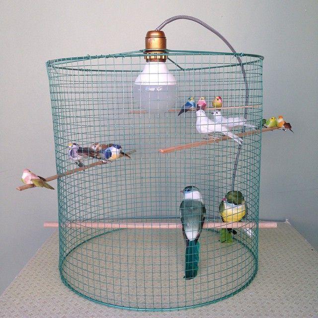 17 meilleures id es propos de artisanat de voli re sur pinterest travaux du mangeoire pour. Black Bedroom Furniture Sets. Home Design Ideas