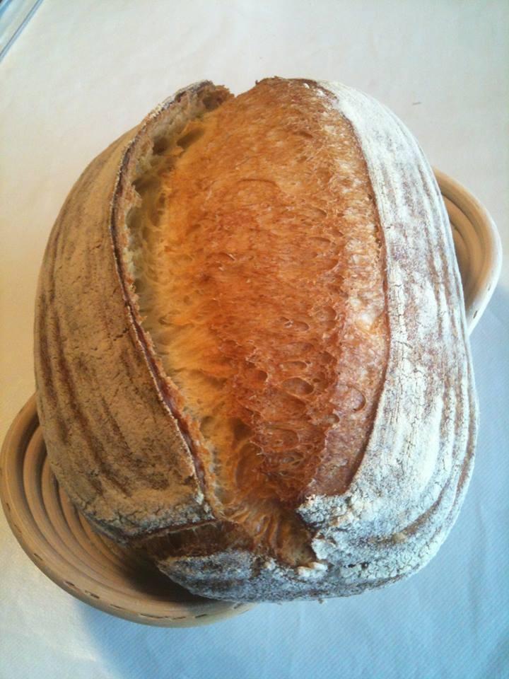 Pane 100% grano duro a lievitazione mista - Pane di grano duro con lievito madre e lievitazione finale in frigorifero (http://www.profumidalforno.it/portal/ilpanedeltapiro/pane_di_grano_duro_fermentazione_mista_lievitazione_frigo)