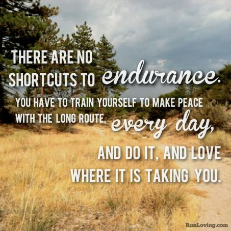 There are no shortcuts to endurance.  You have to train yourself to make peace with the long route...every day.  And do it and love where it is taking you. <3