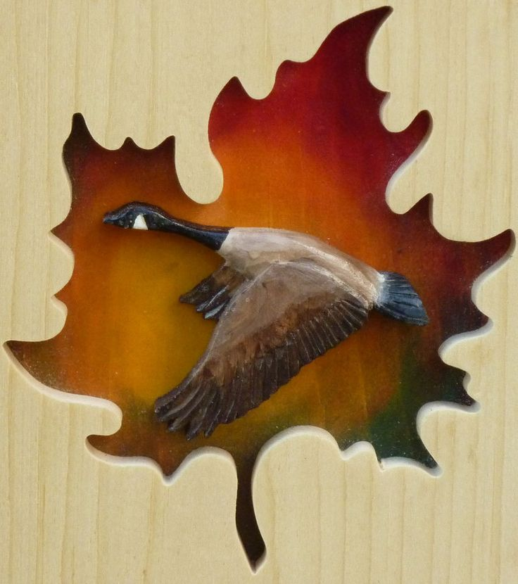 A Canada goose in a maple leaf.  A great welcome paddle for the cottage.