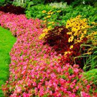 Fotos-de-jardines-pequeños-modernos-9.jpg