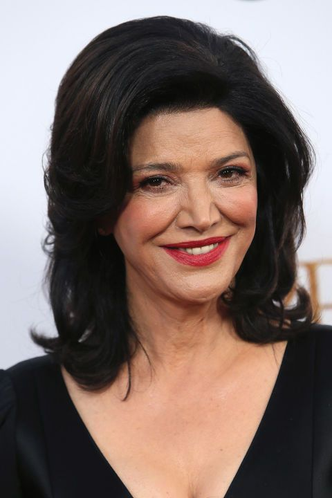 Shohreh Aghdashloo's Voluminous Shag  Shags don't have to be a messy rocker hairstyle, as proven by Shohreh's polished version. It takes on the shape of a shag thanks to several layers, but the volume and curled-up ends give it a dressier look.