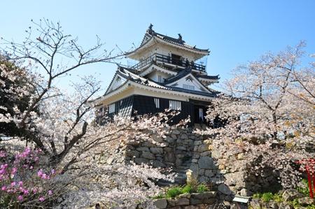 castle 浜松城