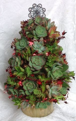 I'm having so much fun changing the look of the succulent tree with a little of this and a little of that!  Come make a succulent something ...