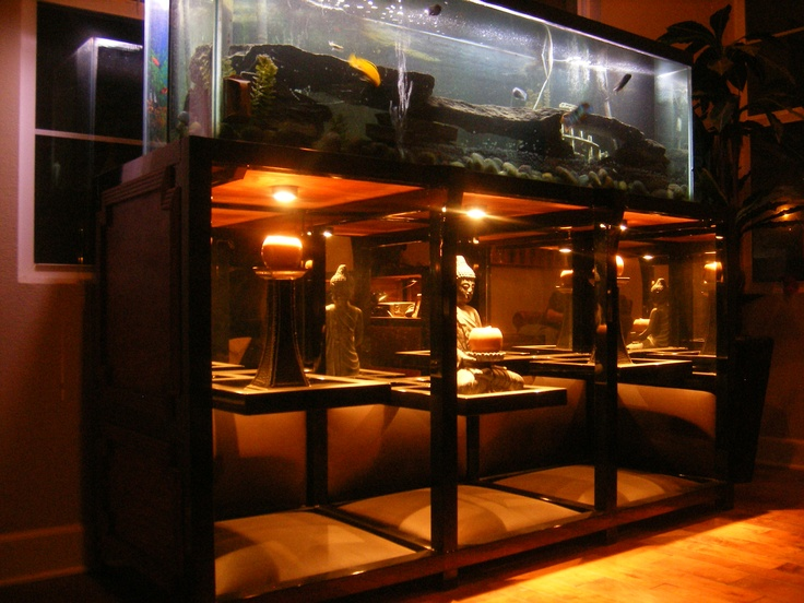 Metal frame aquarium stand my creations pinterest for Metal fish tank stand
