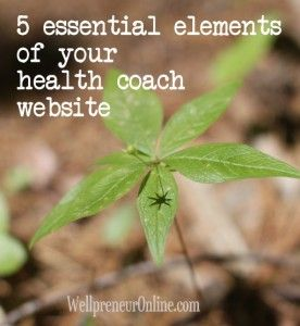 The 5 essential elements of a health coach website | WellpreneurOnline  HANNAH B WELLNESS has a beautiful and easy to use website by Jan 31, 2015, with 4 blog entries and a resource page.   By March 31, 2015, the website will include 4 fitness videos, 4 health tip videos and 4 cooking videos.