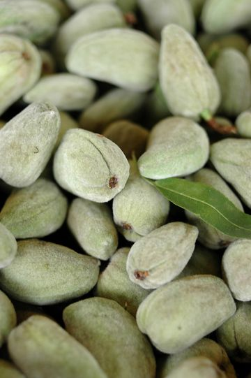 Unripe almonds — otherwise known as green almonds — go great in salads, soups and pastas.