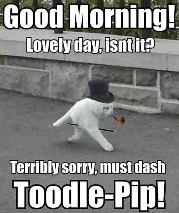 12 Funny Good Morning Memes Peppy Quotes Only Morning People Can Understand Cute Good Morning Quotes Good Morning Funny Morning Memes