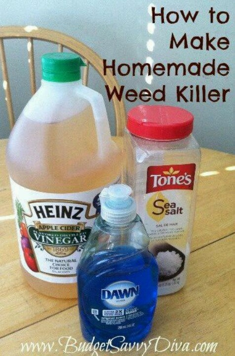 how to make the best homemade weed killer