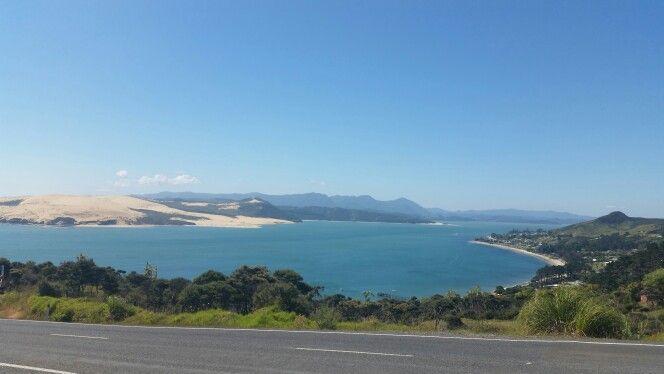 #Oponini #HokiangaHarbour #NZ
