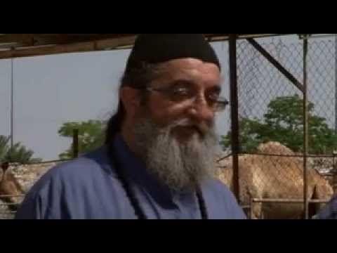 Άγιος Γεράσιμος ό ιορδανίτης 2011 - www.iordanitis.com - St. Gerasimos -...
