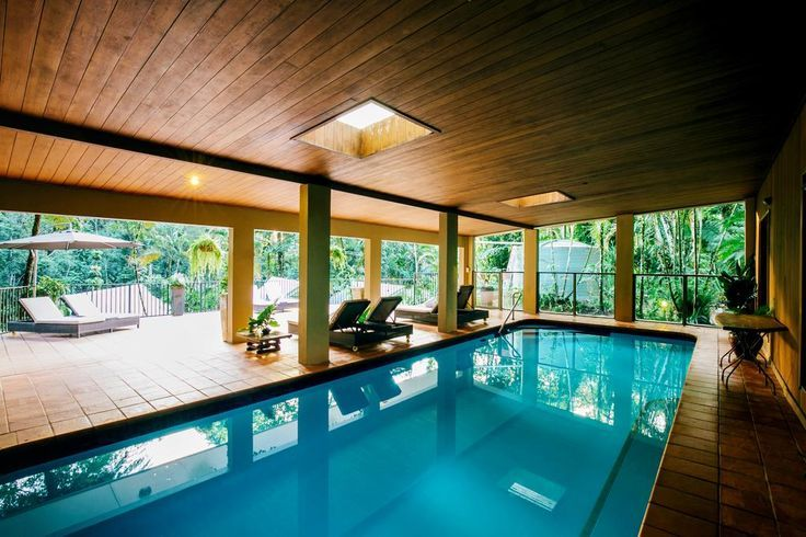 Swimming in the treetops of the daintree rainforest as Silky Oaks Lodge.