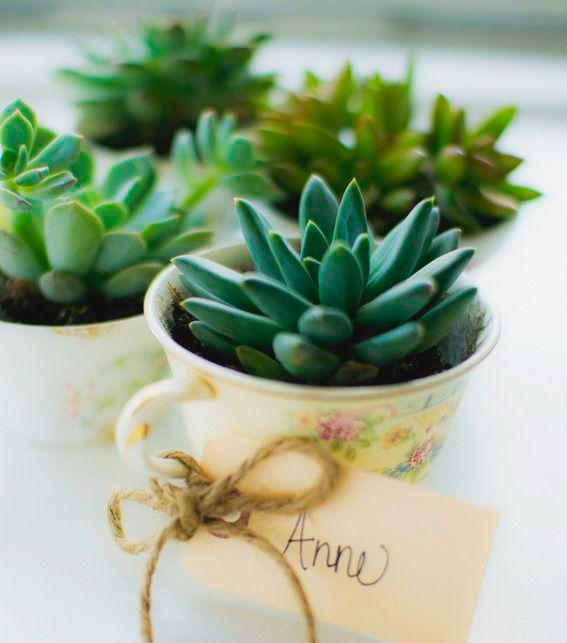 3 ideas para los mejores y más económicos souvenirs de boda que hayas visto   Preparar tu boda es facilisimo.com