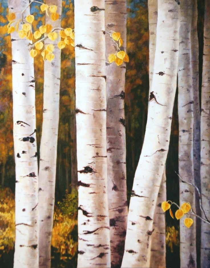 Fall Quaking Aspen Trees White Gold by sagewest    would love these trees in my yard =]