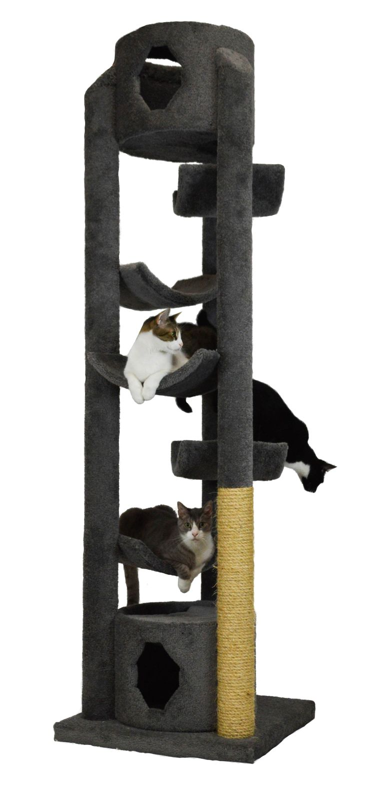 Molly And Friends Extra Large Cat Furniture Comes In A Variety Of Carpeted  Or Sisaled Shapes, Sizes And Colors! Mix And Match To Fit Your Decor!