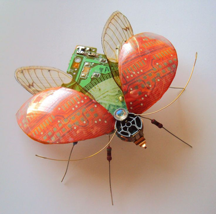 AD-Circuit-Board-Winged-Insects-Dew-Leaf-Julie-Alice-Chappell-7...Amazing
