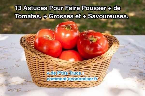Voici 13 astuces qui vont vous aider à faire pousser plus de tomates, de plus grosses tailles et meilleurs au goût en un rien de temps ! Découvrez l'astuce ici : http://www.comment-economiser.fr/13-astuces-pour-faire-pousser-plus-de-tomates-plus-grosses.html?utm_content=buffer760ac&utm_medium=social&utm_source=pinterest.com&utm_campaign=buffer