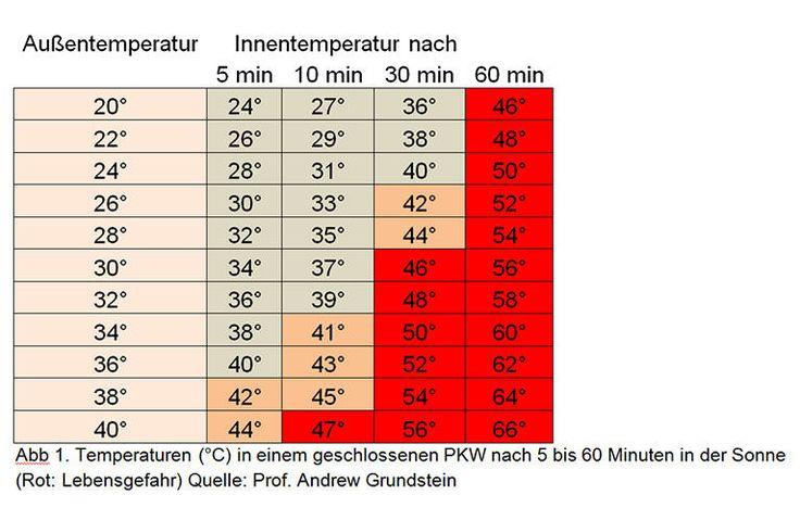 Bei Temperaturen über 30 Grad in Deutschland sollte sich jeder Hundehalter einmal mit dem Thema Hitzschlag auseinandergesetzt haben und die Symptome kennen. Genauso sollte man auf die hohen Tempera…