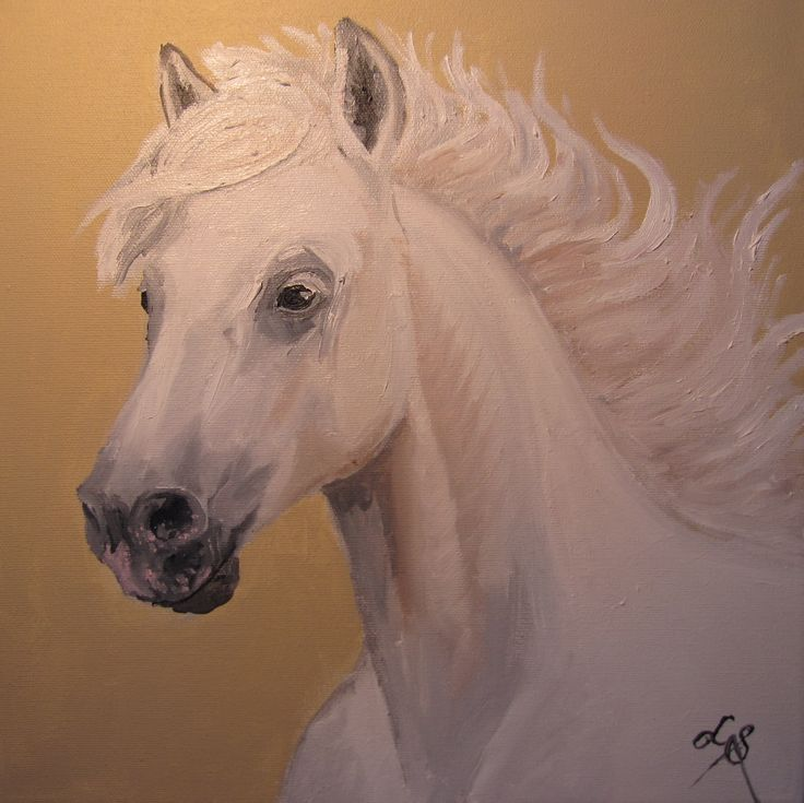 I painted this for my Mum's birthday...she requested a horse!