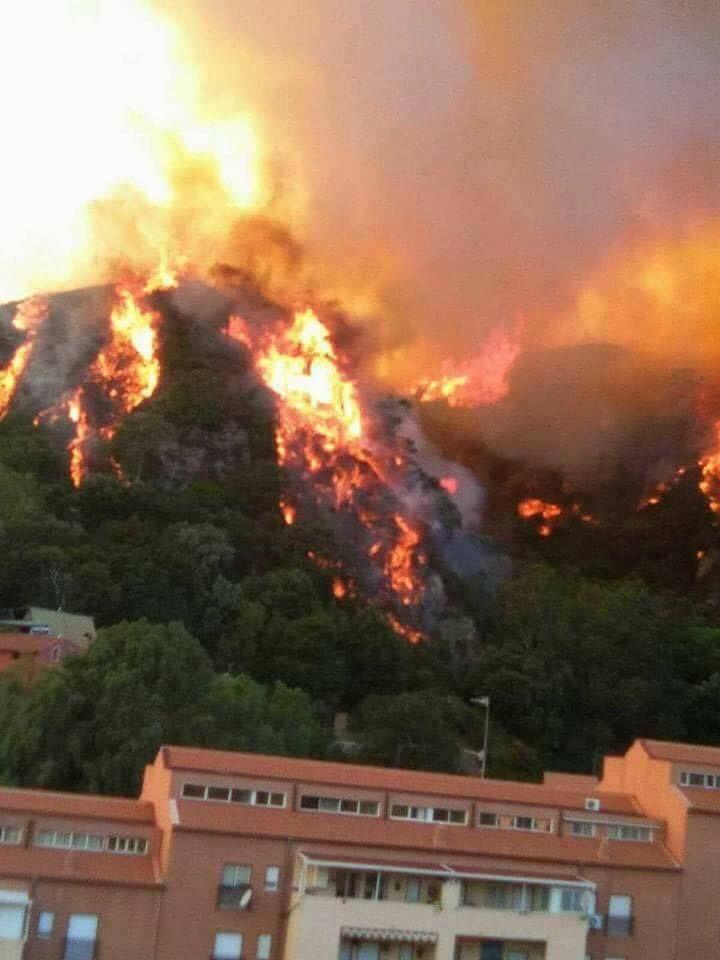 Panico+e+terrore+nei+Paesi+Vesuviani+cielo+marrone+e+pioggia+di+ceneri
