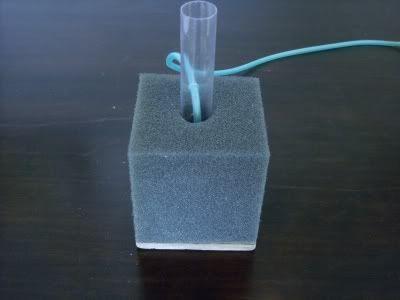 Diy Sponge Filters Best One Aquarium Pinterest And Sponges