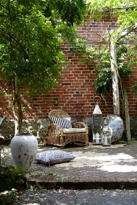 Bambu en maceta exterior great bambu decoracion comprar decoracion de macetas con canas real - Bambu planta exterior ...