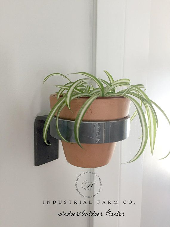 Hanging Plant Plant Holder Hanging Planter Shelf Planter Etsy Wall Mounted Planters Planters Hanging Plants