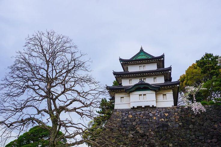 In Tokyo Imperial Palace grounds. ������ #Tokyo #japan #travel #travelgram #photography #photooftheday #instagood #igers #japantravel #travelphotography #trip http://tipsrazzi.com/ipost/1506240830170671360/?code=BTnPg38gykA