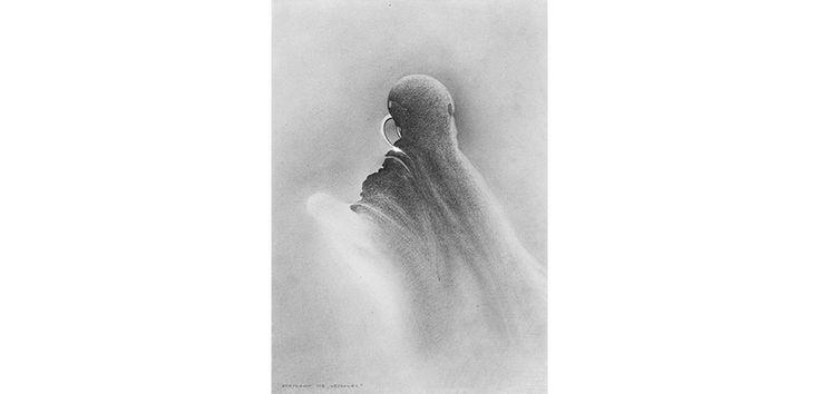 Andrzej Bertrandt:   Wędrowiec, 458