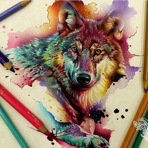 1177 Best Art Images On Pinterest Colouring Pencils Drawing Colour Drawing