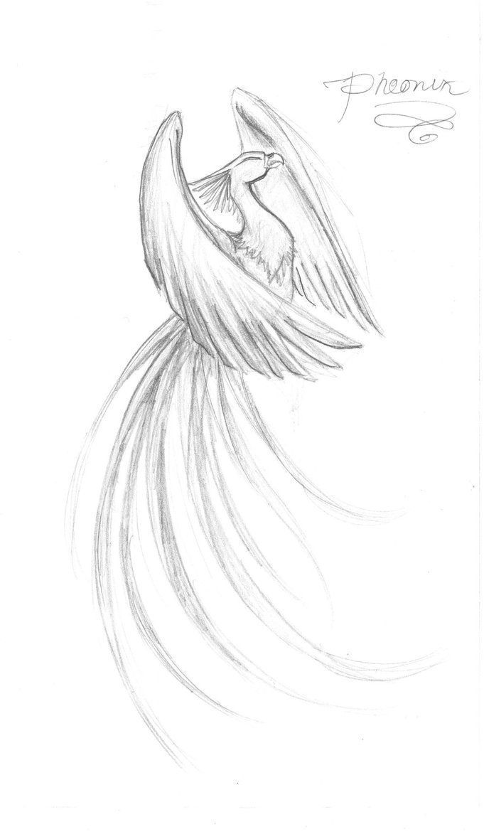 Phoenix by ~Kamiruchan015 on deviantART Im looking for something strong, but delicate all at once.
