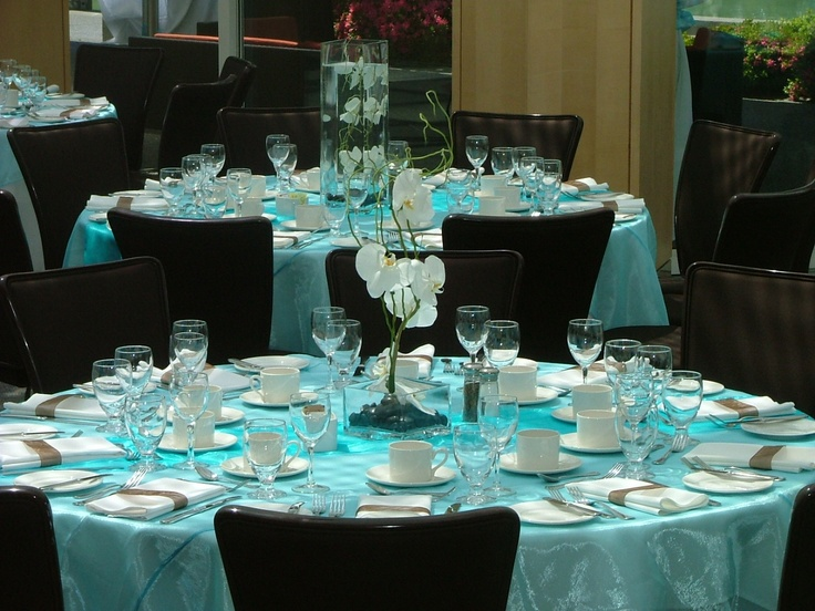 31 best wedding shades of blue images on pinterest wedding places blue wedding reception decor junglespirit Images