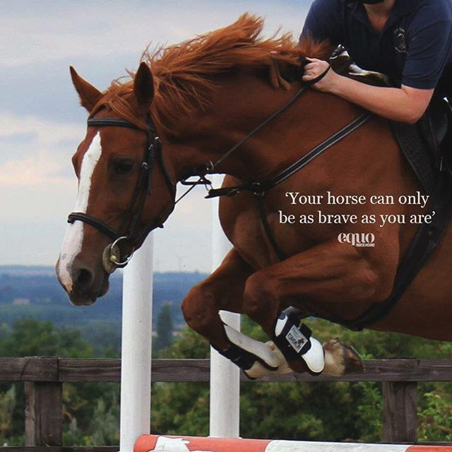 Your horse can only be as brave as you are. #MotivationMonday #quote #EquoEvents