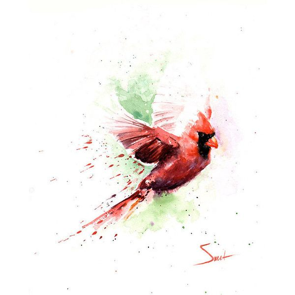 CARDINAL BIRD PAINTING red cardinal art, cardinal gift, cardinal... ($25) ❤ liked on Polyvore featuring home, home decor, wall art, animal paintings, bird home decor, watercolor painting, giclee painting and bird wall art