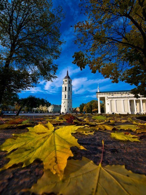 Apprivoiser l'Europe Centrale | #Lituanie |