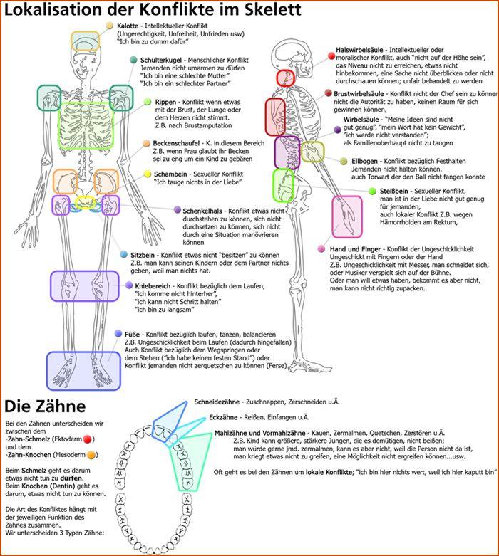 skelett selbstwerteinbruch konflikt knie schulter rücken wirbel schädel hand finger ellenbogen becken steißbein zähne dentin schmelz beißkonflikt