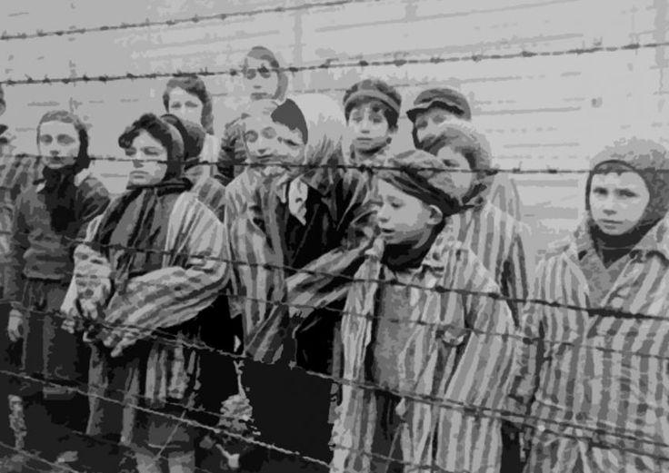 Toplama Kampları ( Concentration Camps )