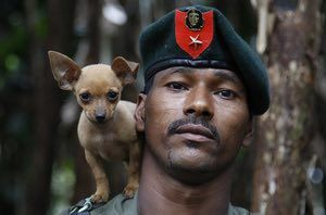 A soldier of the rebel Front of the Revolutionary Armed Forces of Colombia, or Farc, poses with his dog in the southern jungles of Putumayo