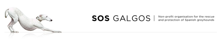SOS Galgos -- Non-profit organization for the rescue and protection of Spanish greyhounds