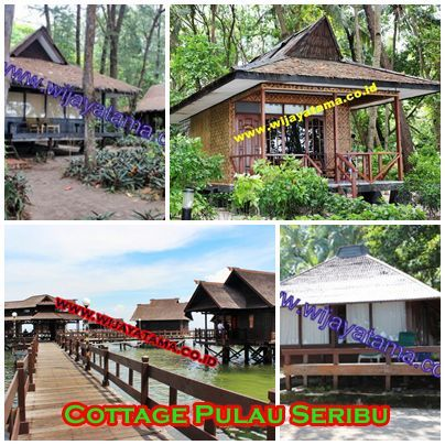 PT. Wijayatama wisata Kantor pemasaran pulau seribu Phone : 021-68274005 | 80880526 | 80889688 mobile : 08159977449 Email : pulauseribu@wijayatama.co.id website : http://wijayatama.co.id