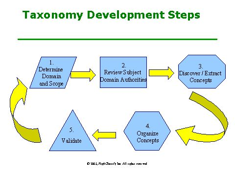 Taxonomy Development Steps.