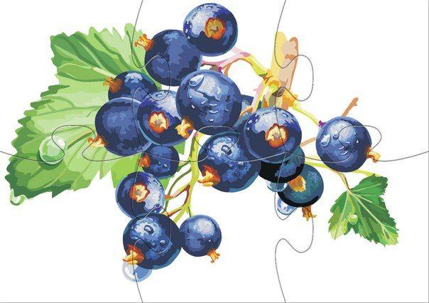 * fruit puzzel! 3-10