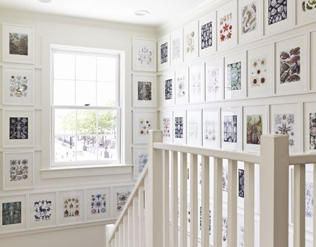 Recycle an art book with beautiful illustrations by framing each page.   Really like the idea of doing this with a natural history book in our living room.