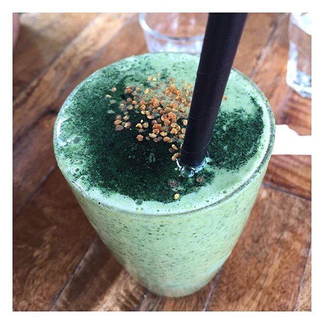 WEBSTA @ theshadyshack - The Kale Storm 🙌🏼 📷 @healthy_valiant